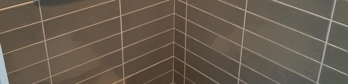 Wandtegels in Toilet